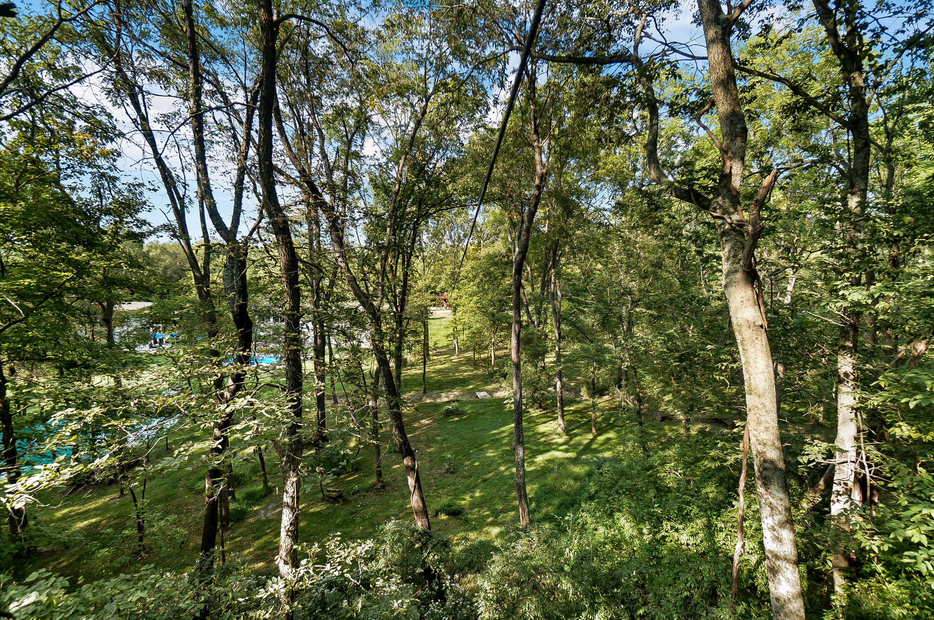 3443 Grinnell Road Property Photo 86