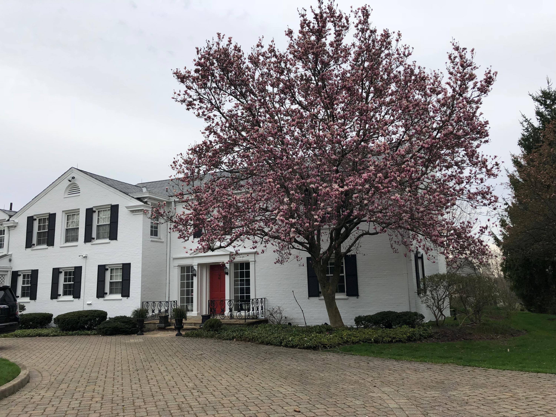 5101 Garden Springs Court Property Photo