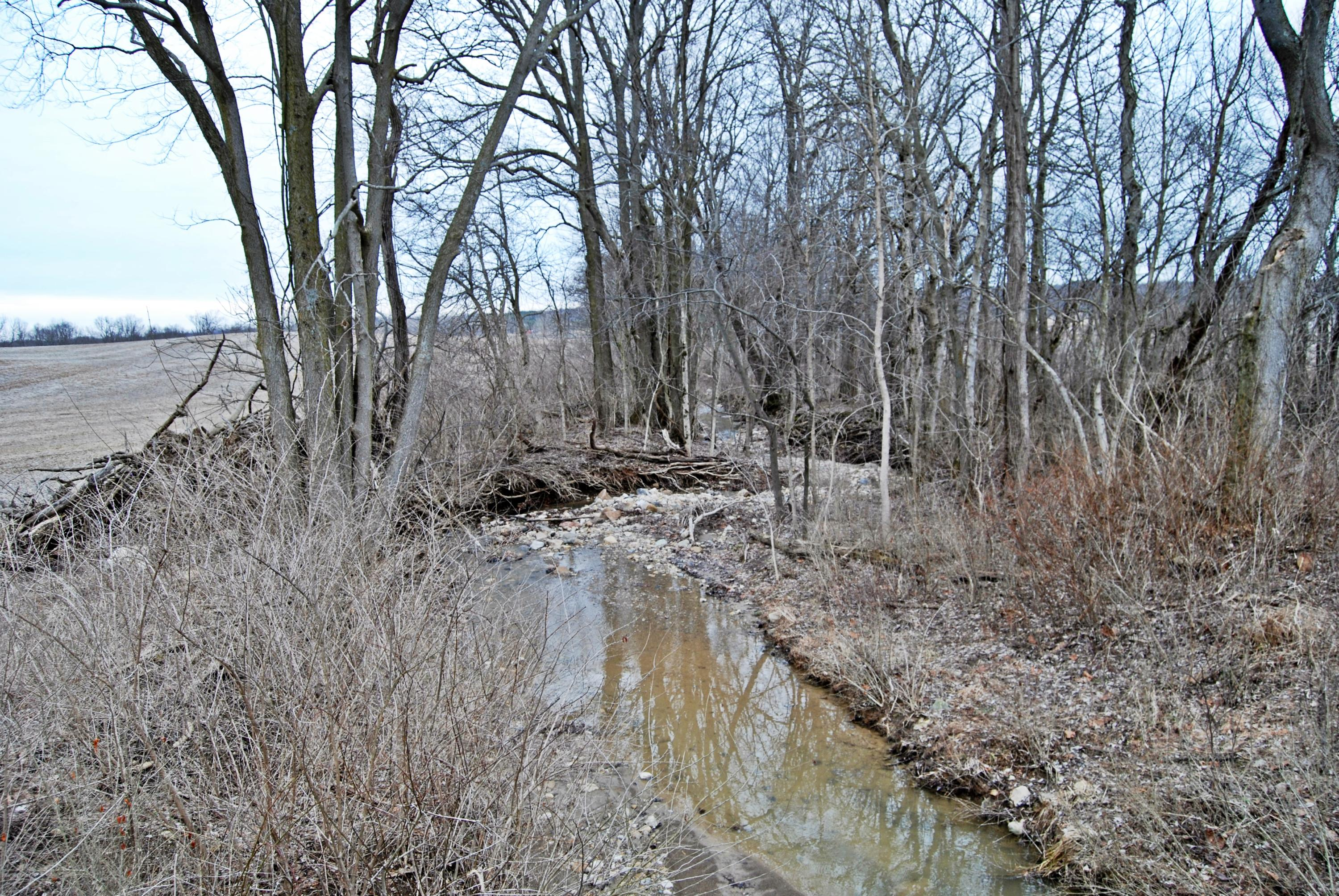 95.24 Acre County Road 25 N Property Photo