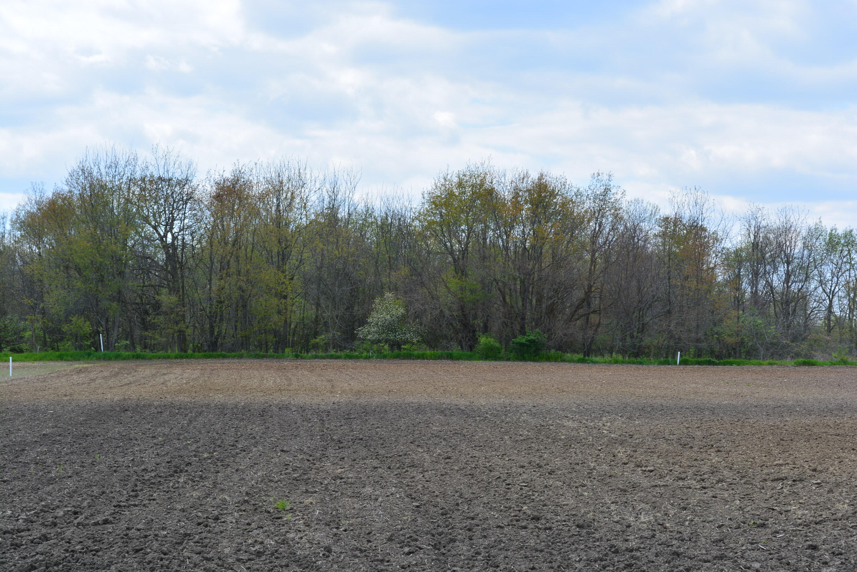 0000 N State Route 559 Property Photo
