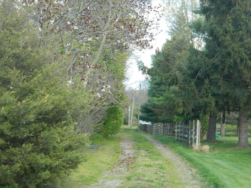 698 Titus Road Property Photo 1