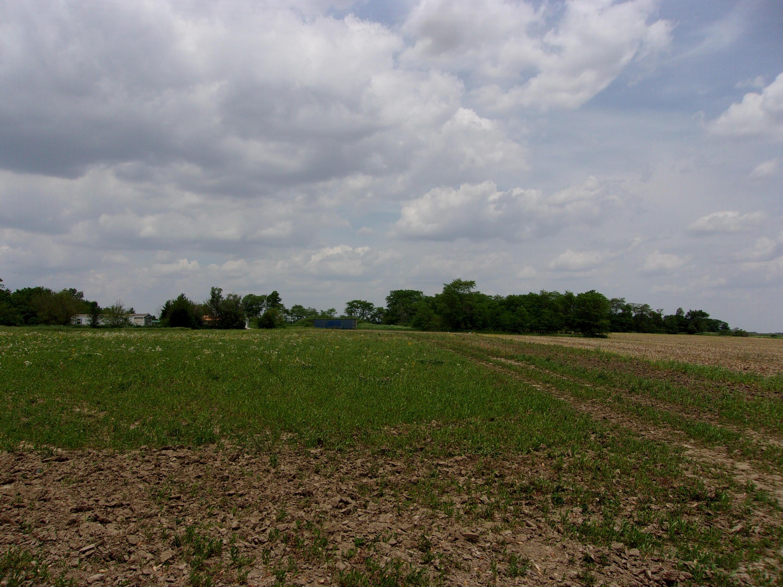 18421 Botkins Road Property Photo