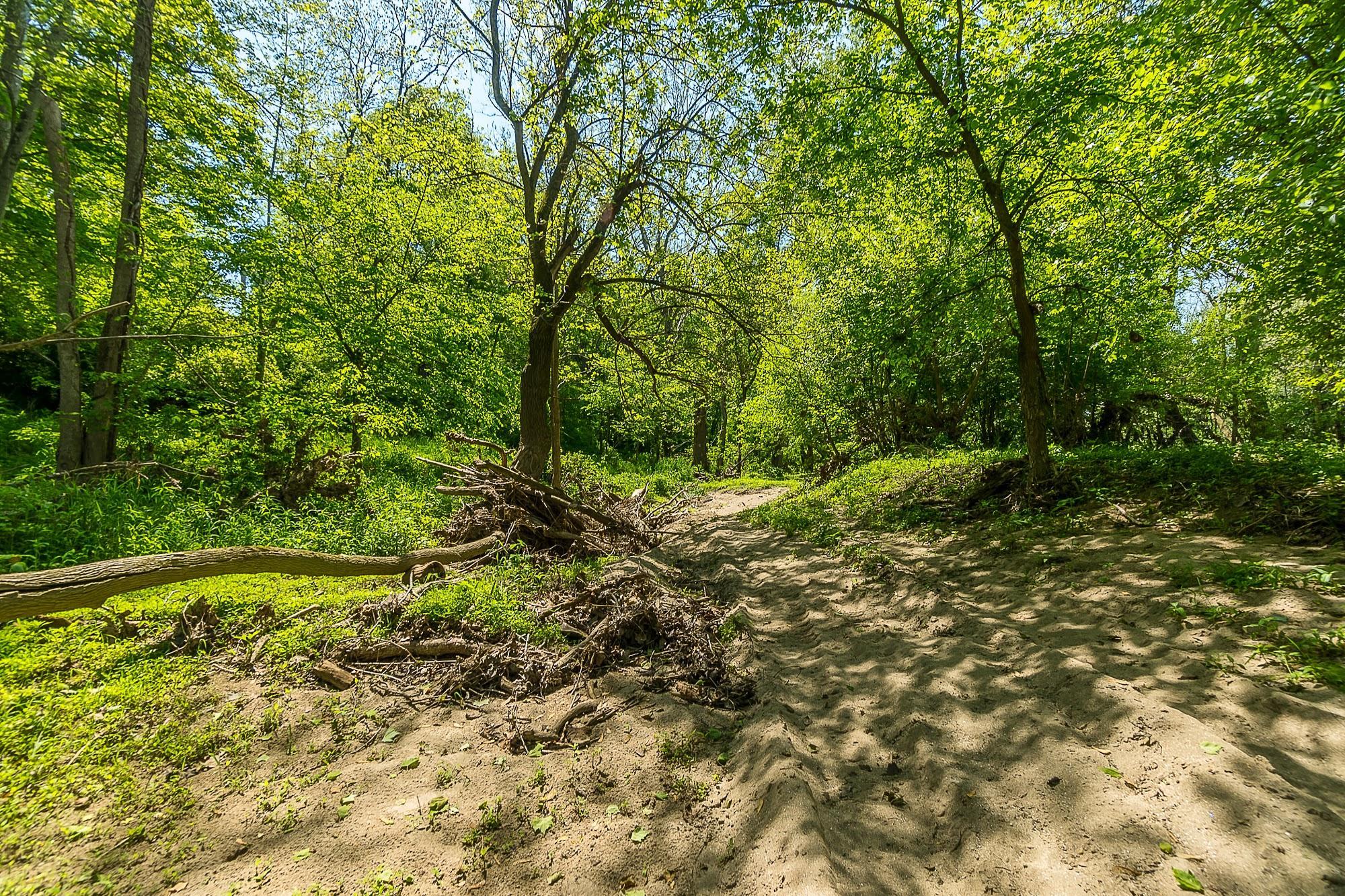 4258 Iddings Road Property Photo 63