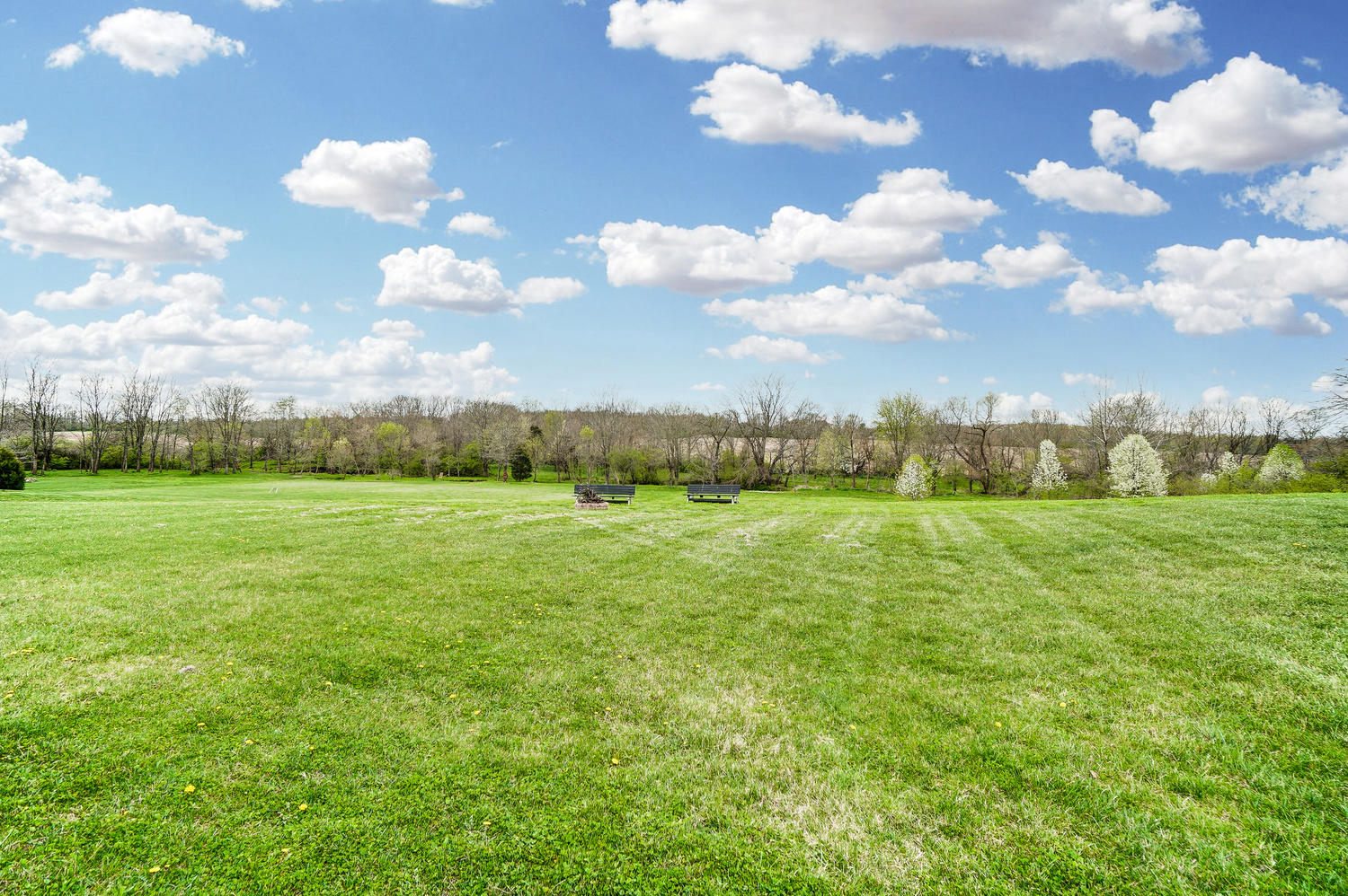 5913 Fowler Road Property Photo 46